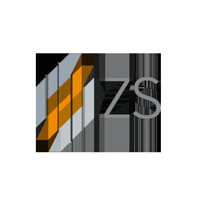 ZS Associate